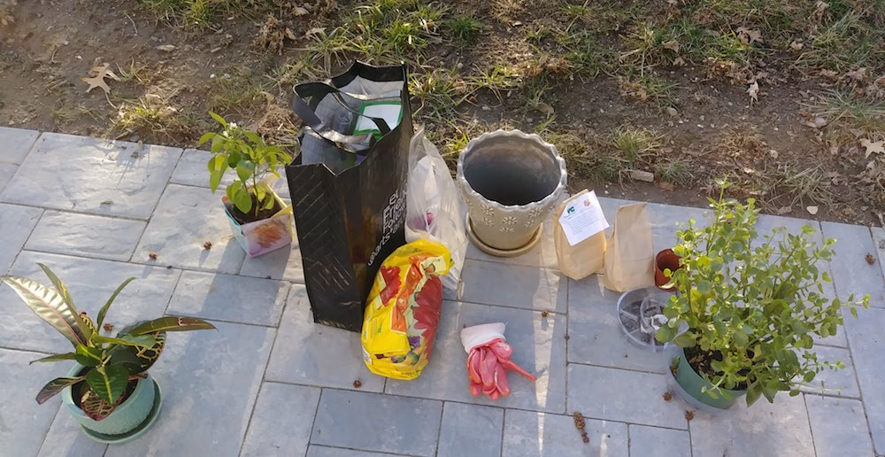 my organic compost use