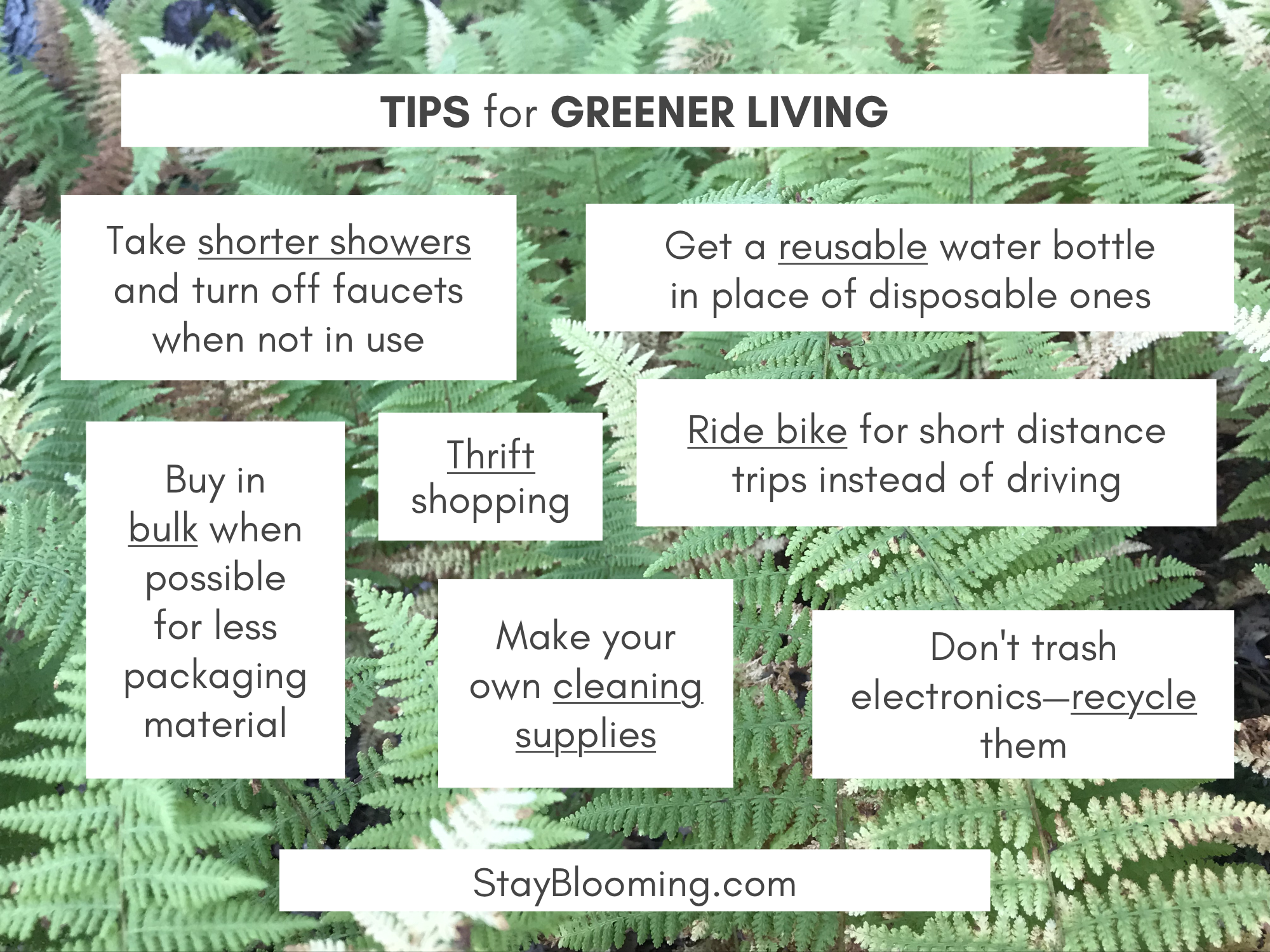 tips for greener living