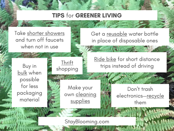 tips for greener living.png