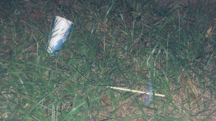 plastic straw ban.jpg